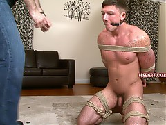 Tied naked and made to crawl across the floor, trained with a whip, nipples and foreskin clamped, fucked with a dildo, left bound on the floor with a vibrator locked in place up his arse