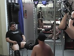 Bear is humiliated when his master makes him lick his boots and lick his prick